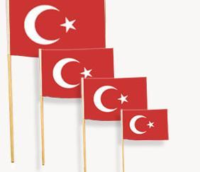 Kağıt Türk Bayrakları
